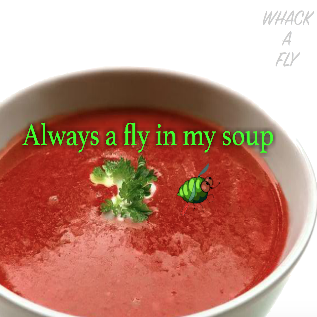 always a fly in my soup