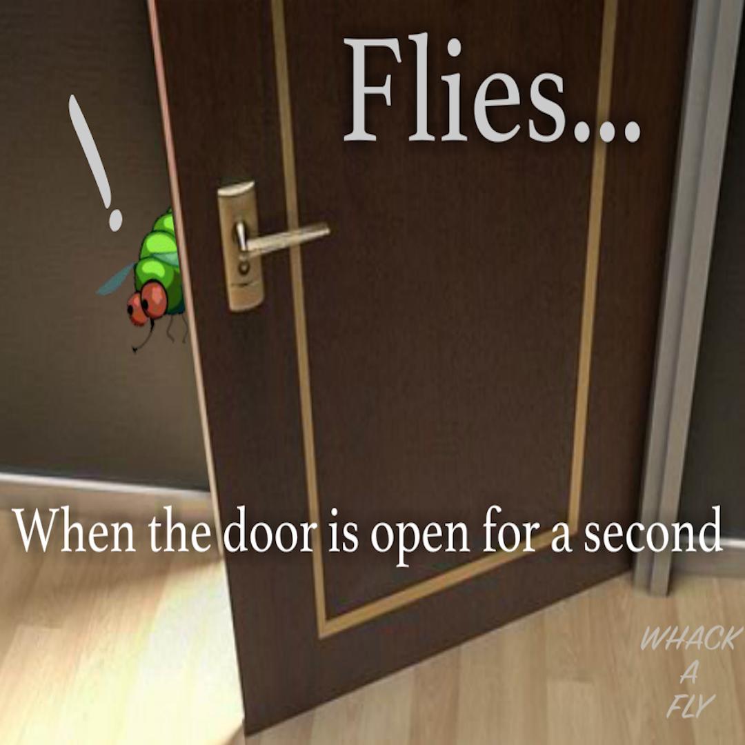 flies always fly through an open door